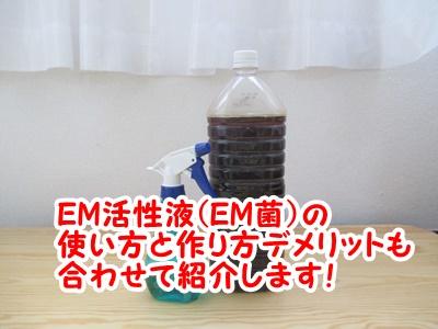 em活性液の使い方やem菌のデメリット。作り方のコツ!店員さんから詳しく聞いてきました♪