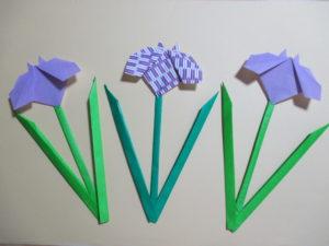 折り紙であやめの作り方。簡単に平面の花と茎が作れるよ♪