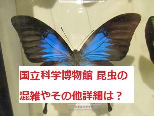 上野 国立科学博物館の特別展の混雑やランチその他詳細をチェック!