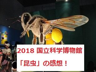 上野 国立科学博物館の特別展 昆虫 昆活しようぜ!の感想